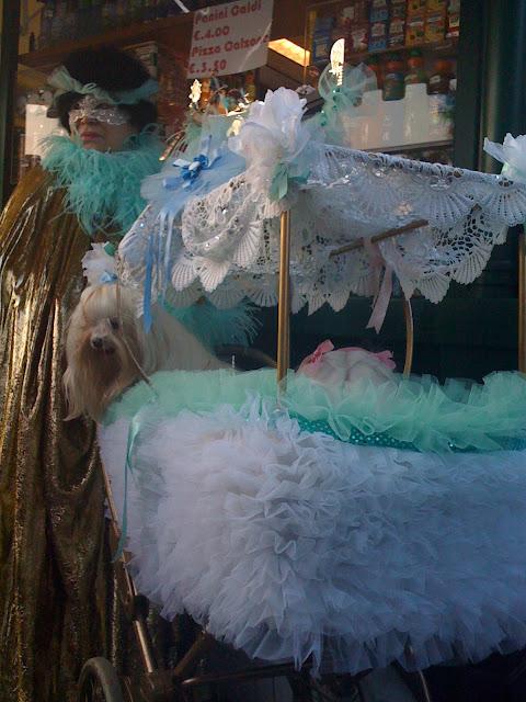 animali in maschera a Venezia