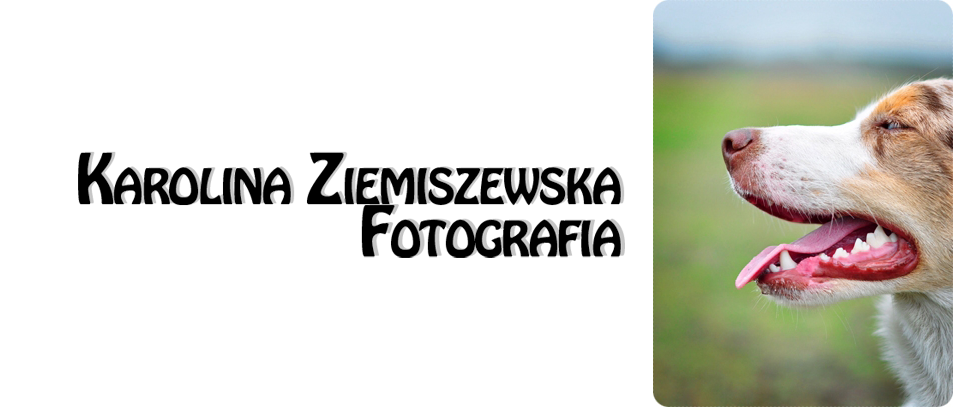 Karolina Ziemiszewska photography