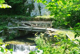 Puente de madera sobre el río Pino