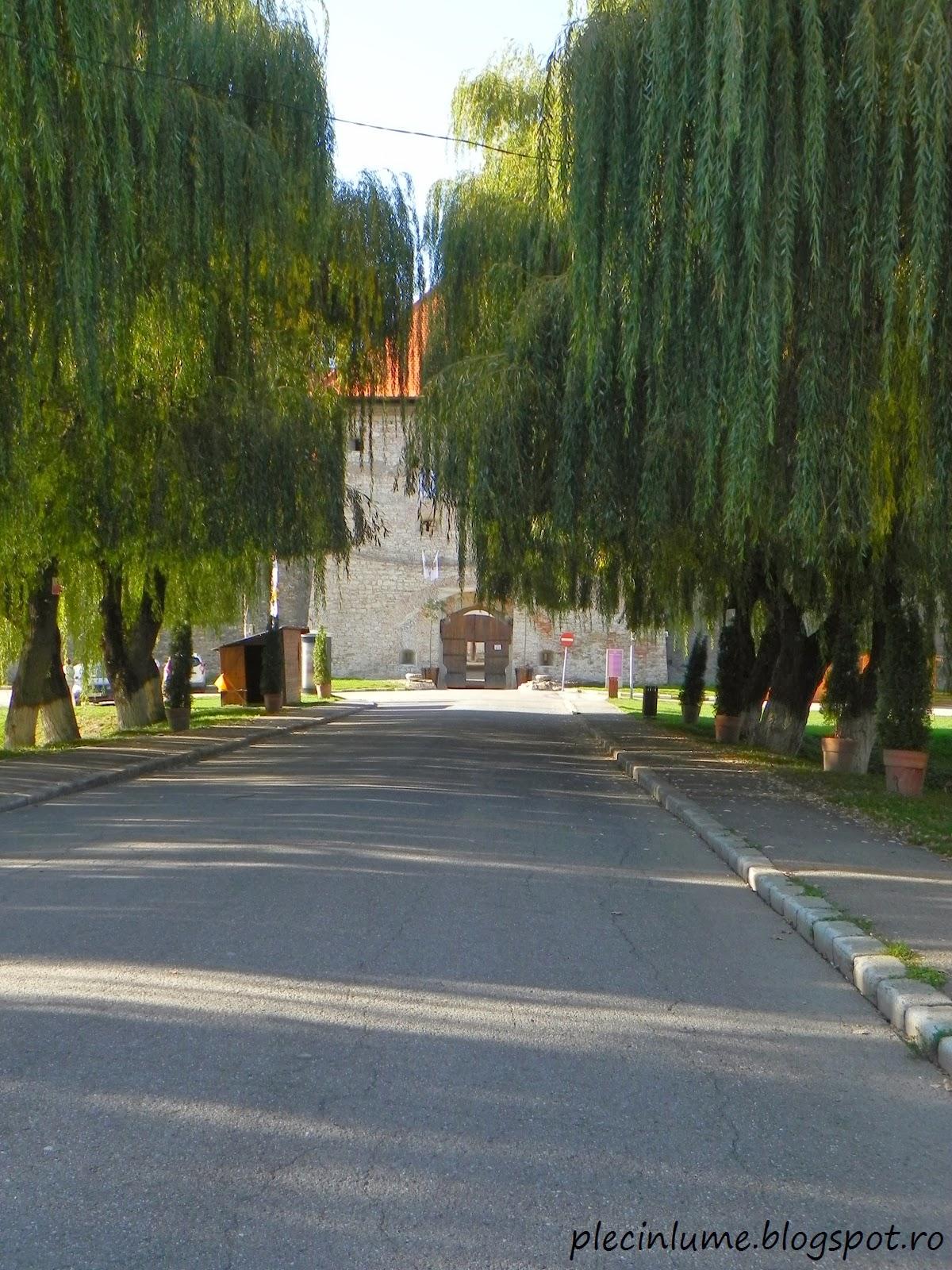 Intrare in Cetatea Fagaras