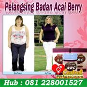 abc acay berry pelangsing tubuh herbal,pelangsing hebat,meizitang,fatloss,lida dahihua,pelangsing super cepat,pelangsing aman,obat diet herbal