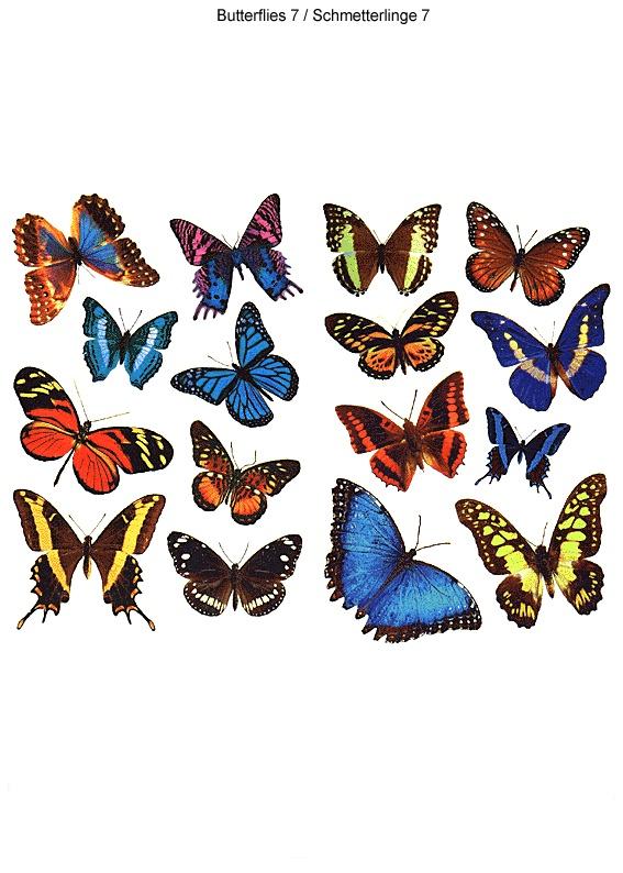 butterfly-tattoo-design