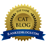 One of the Top Ranked Cat Blogs