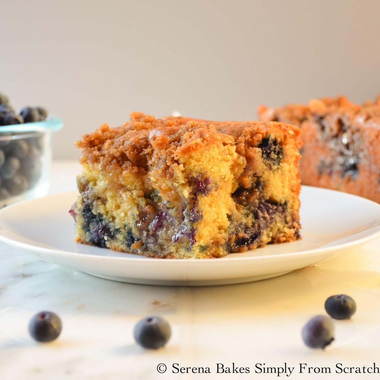 This Blueberry Cinnamon Crumb Coffeecake didn't last long in our house ...
