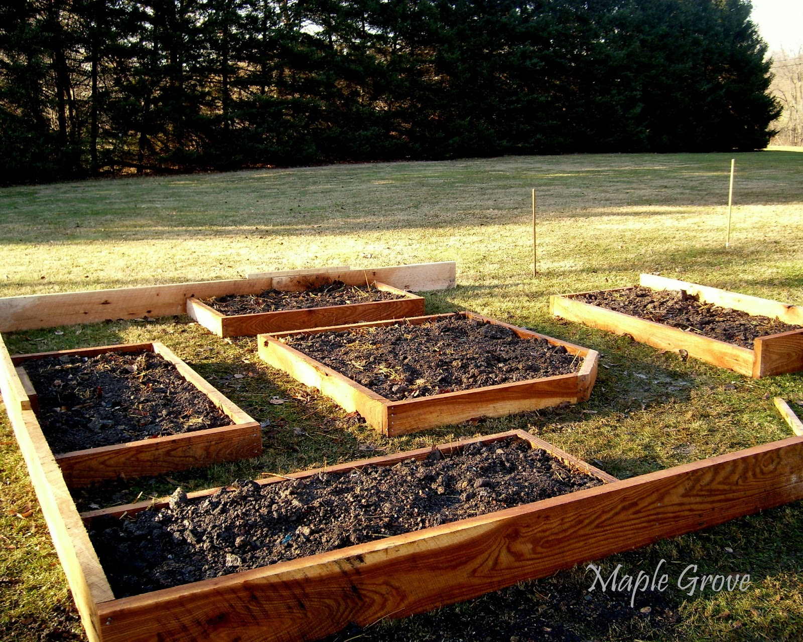 maple grove raised bed gardening with compost sandwiches