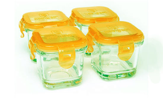The Baby Food Containers to Maintain your Baby's Food Safe