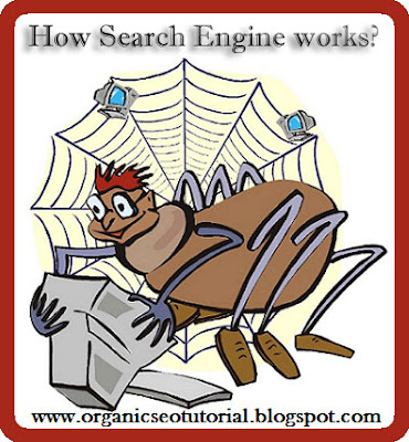 organic seo tutorial how search engien works