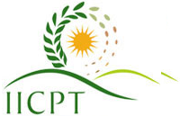 Career at IICPT