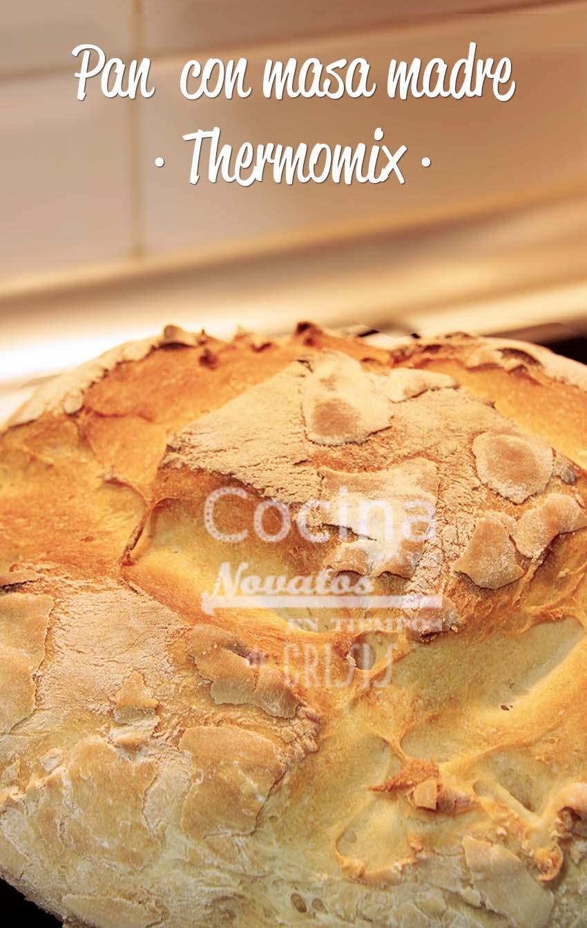 Cocina para novatos en tiempos de crisis pan con masa madre thermomix - Cocina para novatos ...
