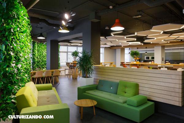 Oficinas 39 verdes 39 para ser m s feliz y for Oficinas decoradas con plantas