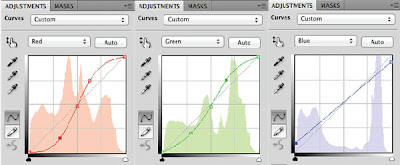screen shot of photoshop curves adjustment