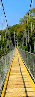 Hanging Bridge Nilambur