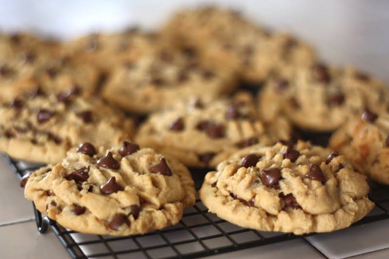 Reeses-Stuffed Peanut Butter Chocolate Chip Cookies