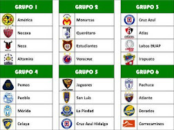 COPA MX CLAUSURA 2013