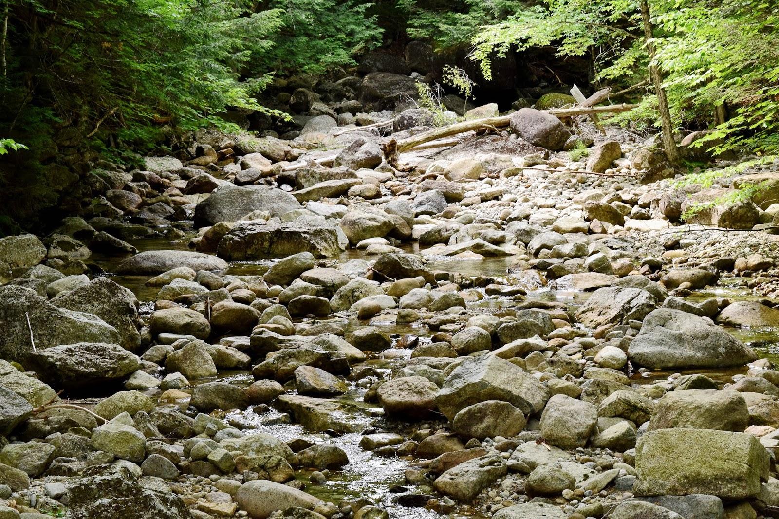 Timothy J Robinson: Gothic Peak hike