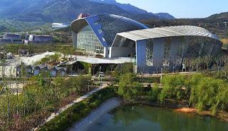Qingdao, Kota Ekologi Bekas Tambang di Cina