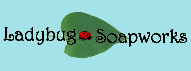 Ladybug Soapworks