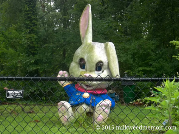 killer bunny looks like evil Alice in Wonderland character, Busch, Arkansas
