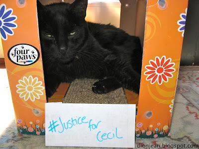 Black cat with sign reading #JusticeforCecil