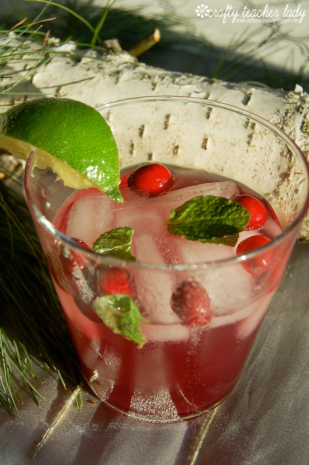 Cranberry Mint Holiday Punch recipe