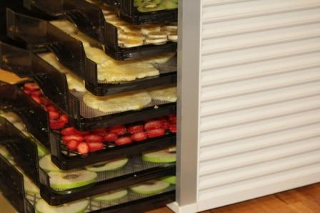 Bio chef place the trays into your bio chef and lock trays into place forumfinder Images