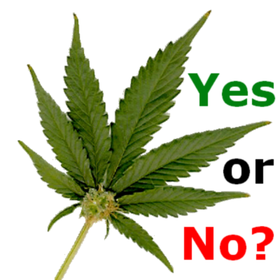 why marijuana should be legalized article