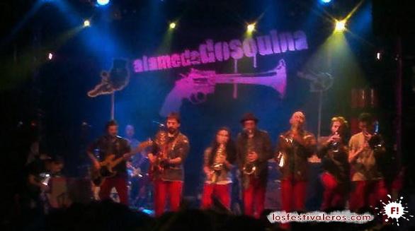 Alamedadosoulna, Planet Babylon, 2014, Festival