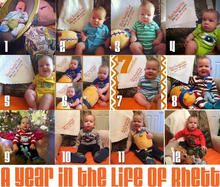 A year in the life of Rhett