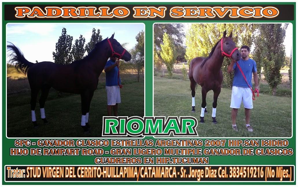 RIOMAR EN SERVICIOS