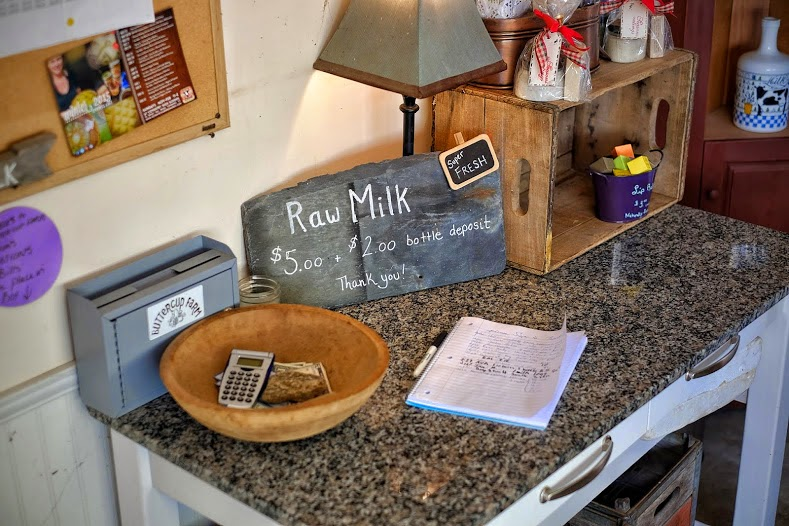 Connecting with our food raw milk from Buttercup Farm