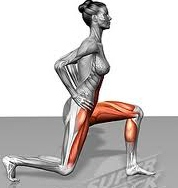 Lunges and what they help withWalking Lunges Muscles Worked