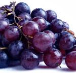 ff grapesraisins Alimentos tóxicos para cães