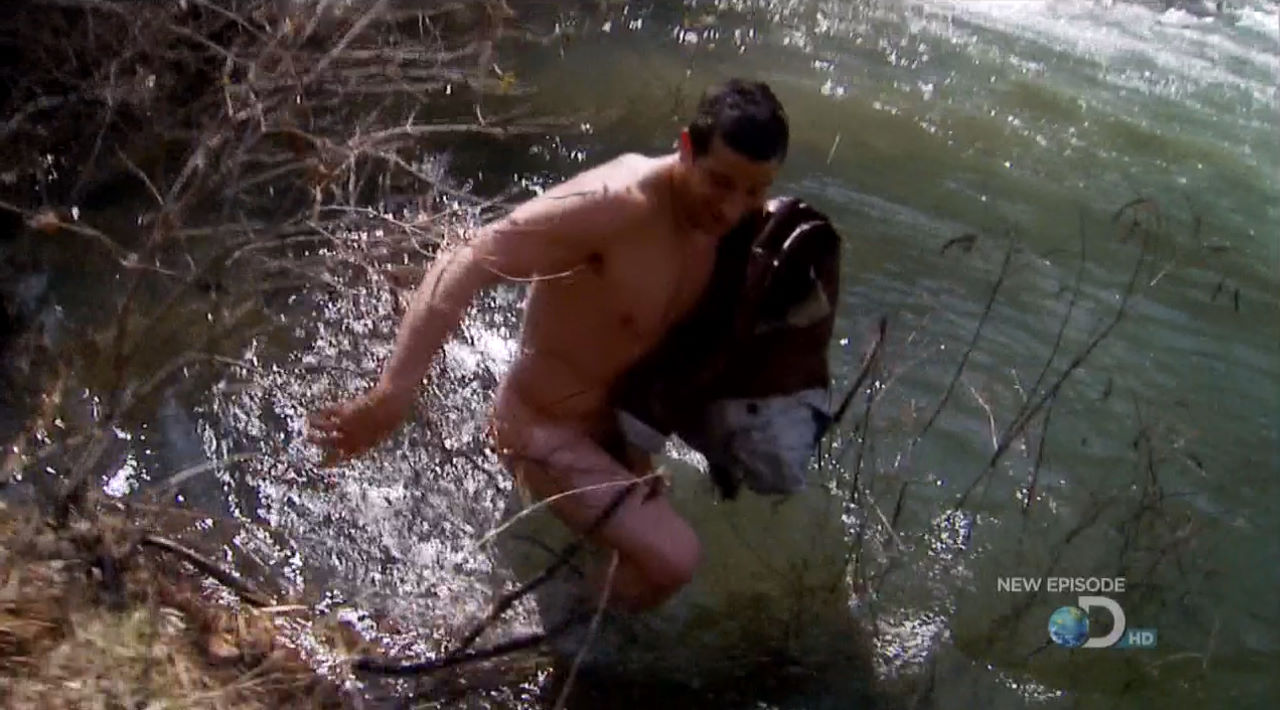 Naked bear nude grylls