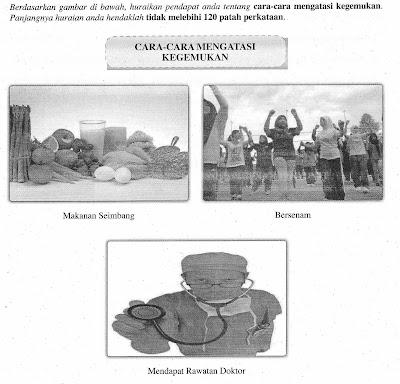 Gambar: Info-Didik: Kertas Model Sebenar BM PMR 2011