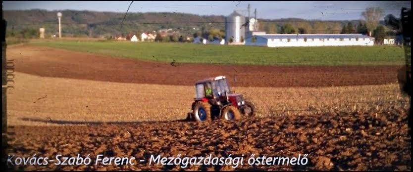 Kovács-Szabó Ferenc - Mezőgazdasági őstermelő