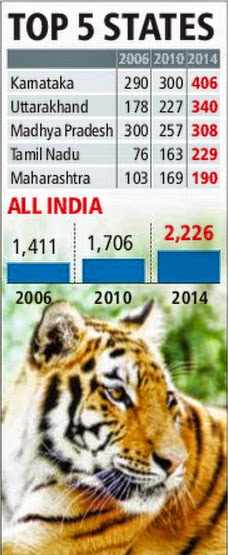Population estimate of Tigers in India
