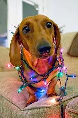 ¡Feliz Navidad! :)