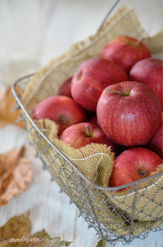 Basket of apples in the fall | www.andersonandgrant.com