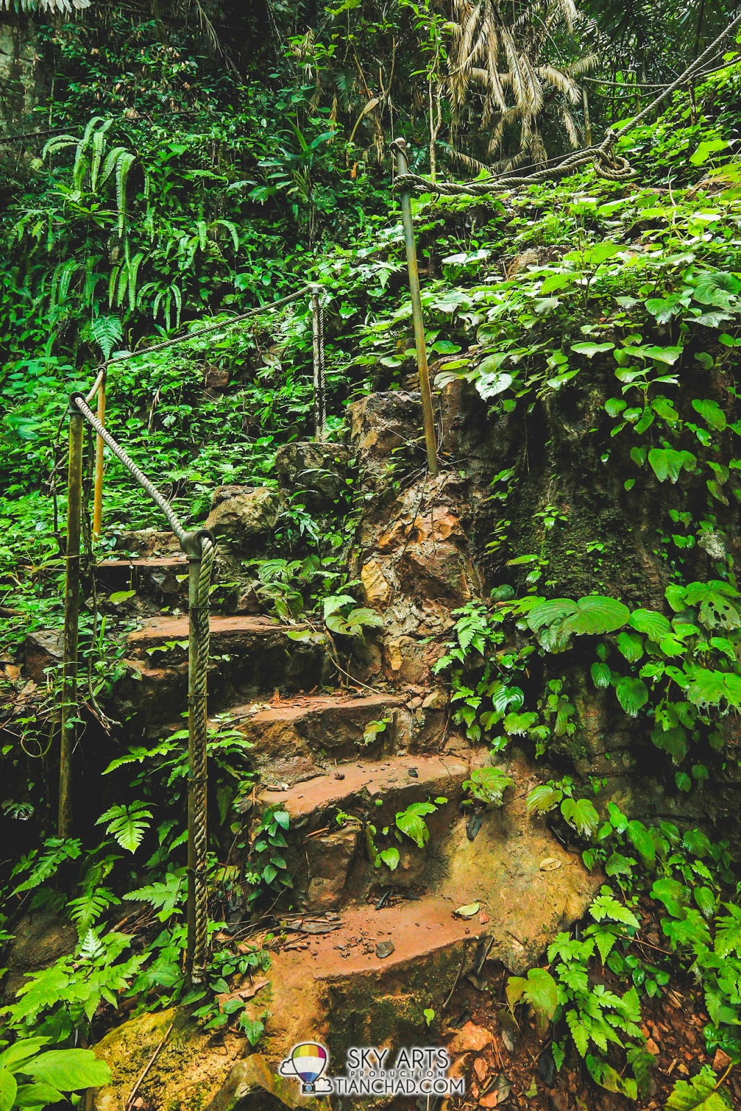 Some manmade stairs on the way uphill to the other side of Qing Xin Ling I guess