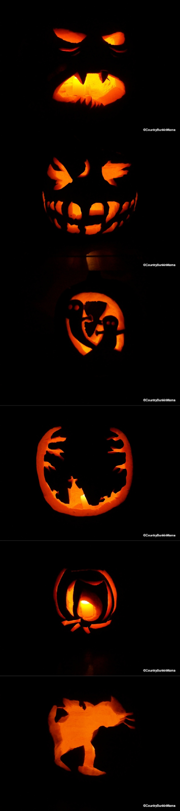 Jack-O-Lanterns carved from Bunkin Mama 's Punkins