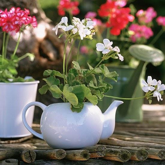 Dr Dans Garden Tips Using The Unusual