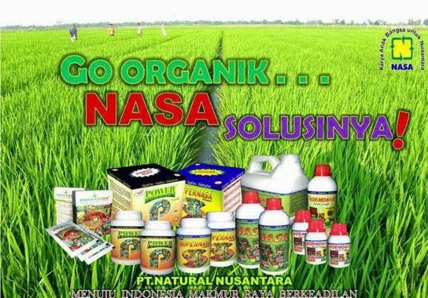 teknik-budidaya-tanaman-dengan-produk-nasa-distributor-resmi-nasa