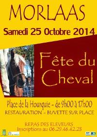 Fête du Cheval 2014 de Morlaas