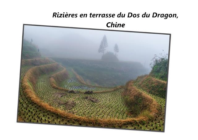 Les rizières en terrasse du Dos du Dragon en Chine