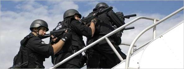 Argendef noviembre 2012 for Interior y policia consulta de arma