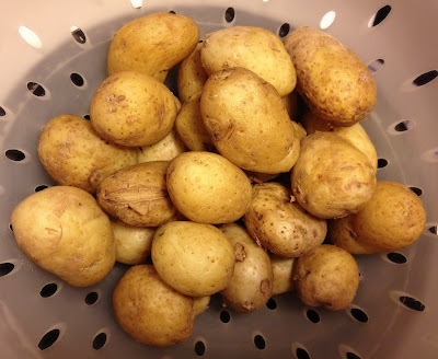 boiled jersey royals