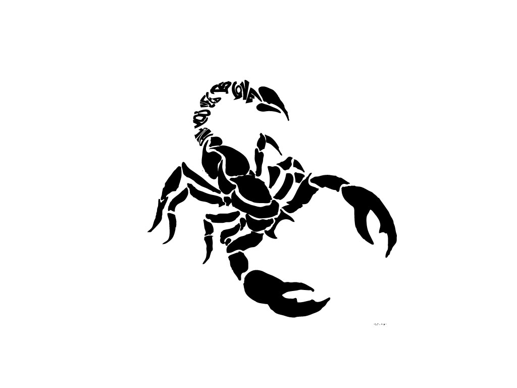 scorpions drawings for tattoo. Black Bedroom Furniture Sets. Home Design Ideas