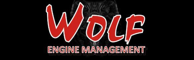 WOLF 3D ECU