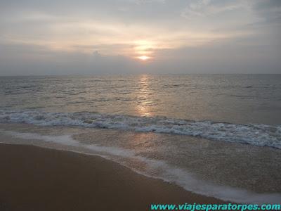 Escapadas en la India (VI). Kerala, 2º parte.
