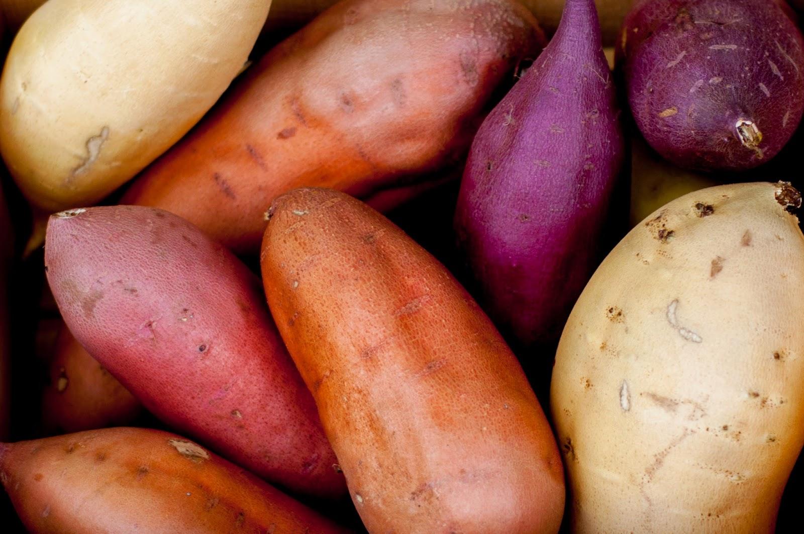 Quinoa Stuffed California Sweetpotatoes |Noms McGee